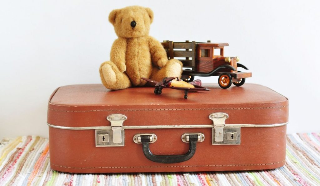 bear on top of a suitcase